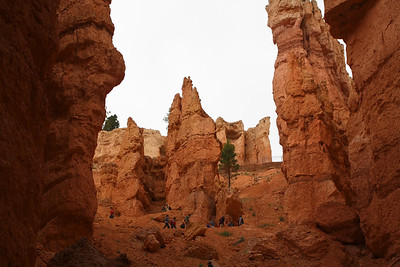 Navajo Loop & Queen's Garden Trail, Bryce Canyon National Park